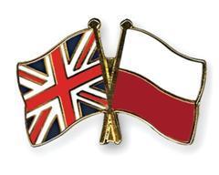 Polish English flag